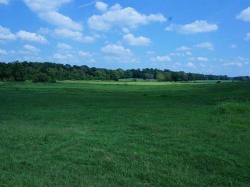 Farm For Sale Southwest Missouri : Exeter : Barry County : Missouri