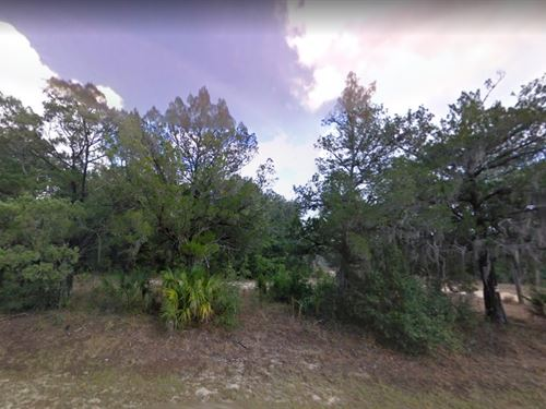 Marion County, Fl $15,000 : Silver Springs : Marion County : Florida