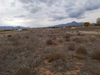 Land Southwest Colorado Cortez CO : Cortez : Montezuma County : Colorado