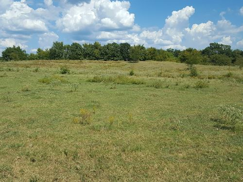 Kiamichi Ranch Land For Sale : Talihina : Le Flore County : Oklahoma