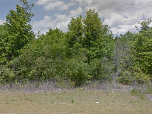Jackson County, Fl $29,500 Neg : Alford : Jackson County : Florida
