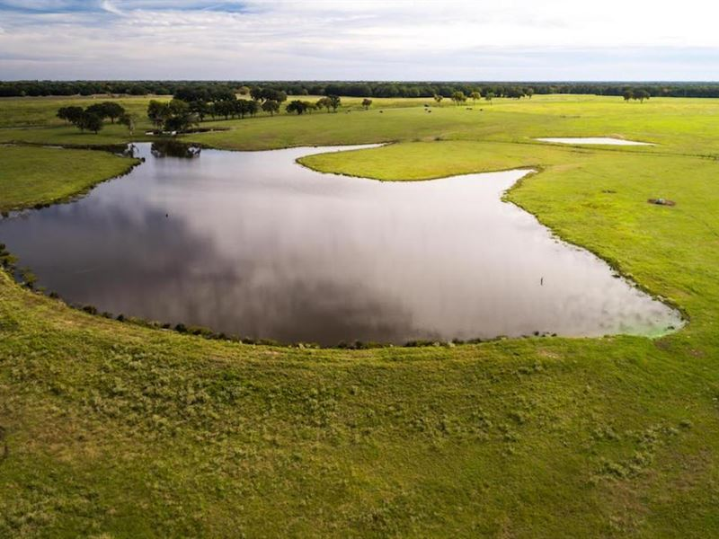 Circle B Ranch : Emory : Rains County : Texas