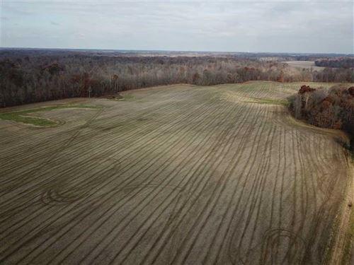 Catlin Farm And Hunt : Rockville : Parke County : Indiana