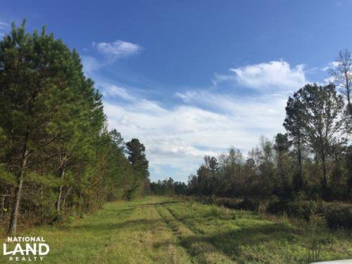 Buck Creek Recreational Tract : Loris : Horry County : South Carolina
