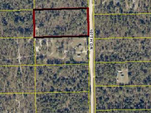 1/2 Vacant Land Great Location Your : O'brien : Suwannee County : Florida