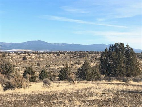 Gorgeous 80.6 Acres of Vacant Land : Alturas : Modoc County : California