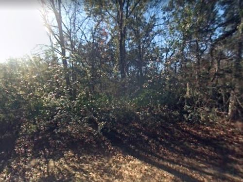 Hernando County, Fl $8,000 : Webster : Hernando County : Florida