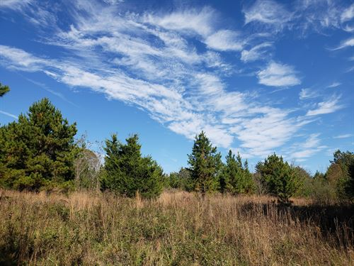 Lawton Road Acreage : Central : Pickens County : South Carolina