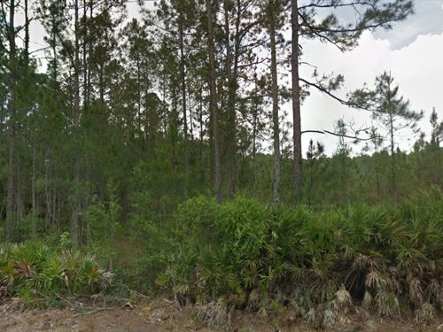 Polk Co, Fl 1.299 Acres $36,500 Neg : Polk City : Polk County : Florida