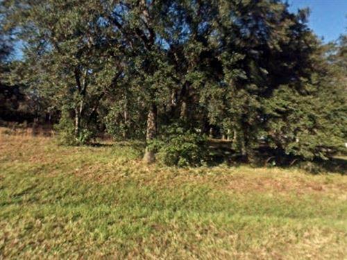 Marion Co, Fl 1.01 Acres $150K : Fort McCoy : Marion County : Florida
