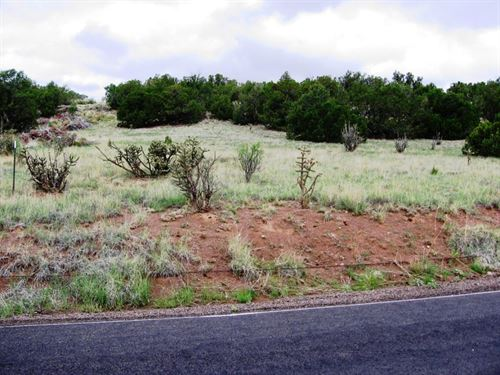 Mountain Homesite Moriarty New : Moriarty : Torrance County : New Mexico