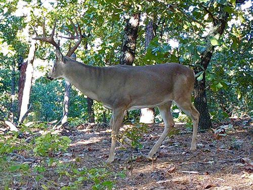 Oklahoma Hunting Land, Pushmataha : Tuskahoma : Pushmataha County : Oklahoma