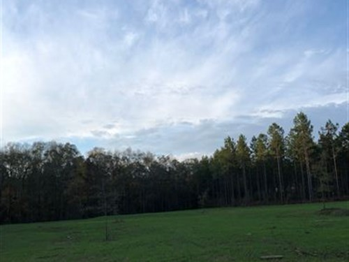 26+/- Acres Near Lagrange : Five Points : Chambers County : Alabama