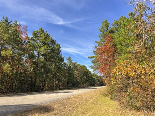148 Ac Waterwood : Huntsville : San Jacinto County : Texas
