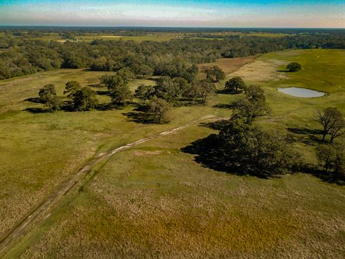 640 Acres In Madison Co : Madisonville : Madison County : Texas