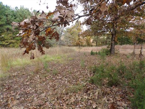 Price Reduced, Rare Recreational : Antlers : Pushmataha County : Oklahoma