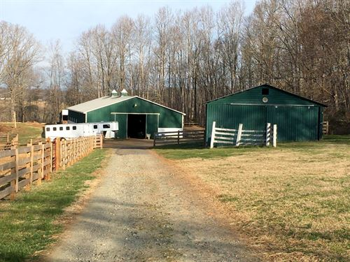 Great Horse Farm : Glade Hill : Franklin County : Virginia