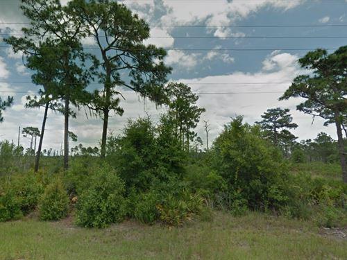 Polk County, Fl $8,000 : Polk City : Polk County : Florida