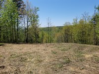 7.54+/-Acres Beautiful Mtn Views : South Pittsburg : Marion County : Tennessee