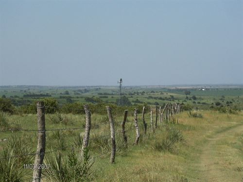 Frontier Forty Nine : Curtis : Frontier County : Nebraska