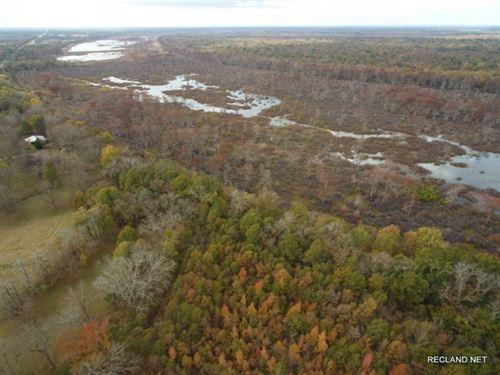 210 Ac, Duck & Deer Hunting Tr : Clayton : Tensas Parish : Louisiana