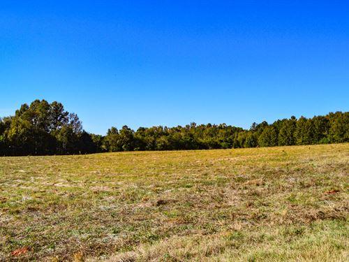 22 Ac, Level, Open Land Near Moore : Moore : Spartanburg County : South Carolina