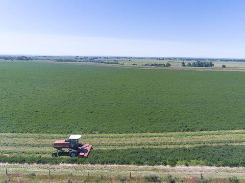Hackamore Ranch Option 2 : Torrington : Goshen County : Wyoming