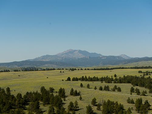 Ck Spring Creek Summer Ranch : Glendo : Platte County : Wyoming