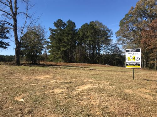 Small Acreage on Hwy 27 : Georgetown : Copiah County : Mississippi