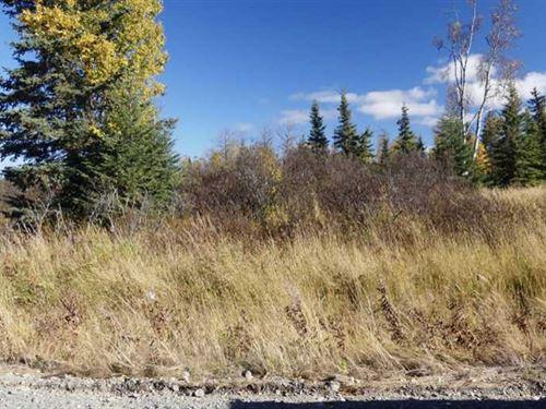 Partial View Lot in Ninilchik : Ninilchik : Kenai Peninsula Borough : Alaska