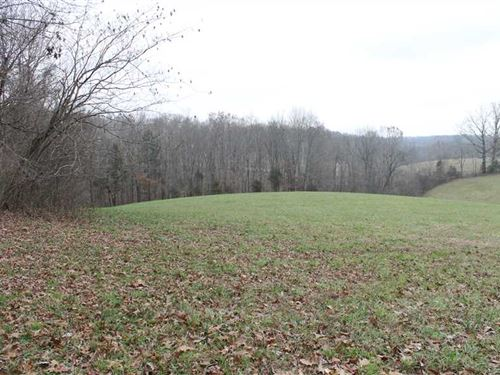 36 Acre Wooded Homesite : Columbia : Adair County : Kentucky