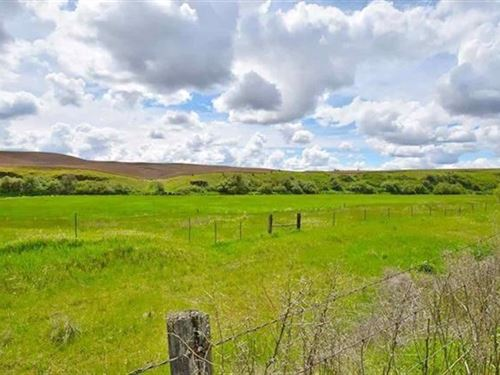 Spokane, Acreage, Creek Frontage : Latah : Spokane County : Washington