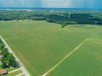 Fertile Farmland In Bennettsville : Bennettsville : Marlboro County : South Carolina