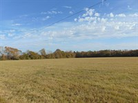 18 Ac Improved Hay High Quality : Danville : Twiggs County : Georgia