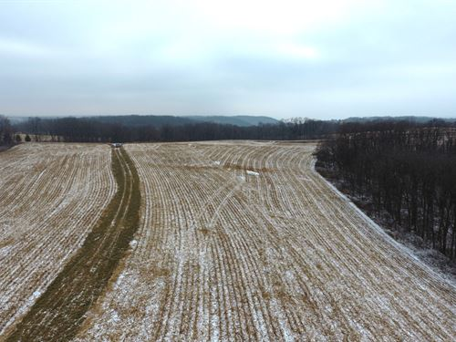 Ridge Top Parcel Near Miss River : Ferryville : Crawford County : Wisconsin