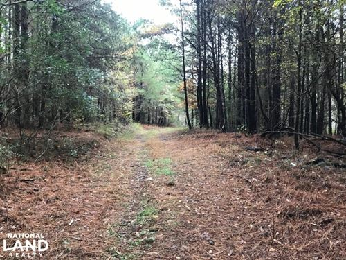 Laney Branch Hunting And Timber Inv : Berry : Fayette County : Alabama