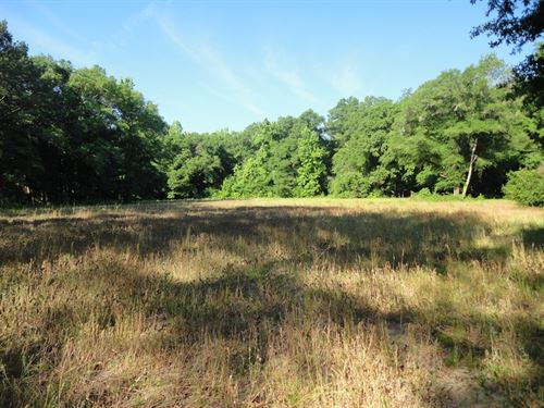1,492 Acres Riverfront Hunting : Georgetown : Copiah County : Mississippi