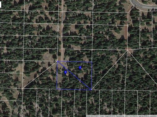 Over 2 Acres Pines Modoc County : Alturas : Modoc County : California