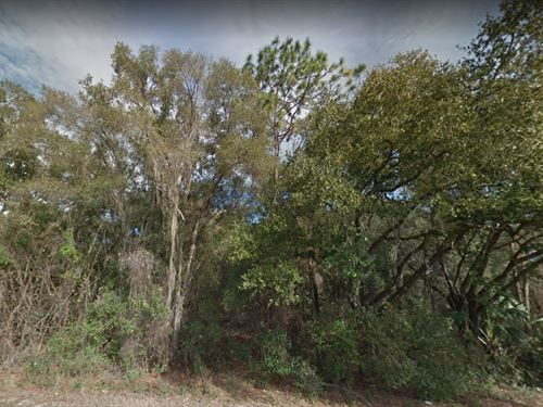 Citrus County, Fl $14,500 Each : Inverness : Citrus County : Florida