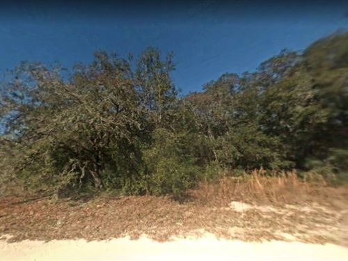 Hernando County $16,000, Reduced : Dade City : Hernando County : Florida