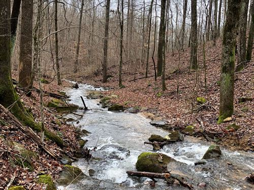 80 Acres With Log Cabin And Creek : Woodville : Jackson County : Alabama