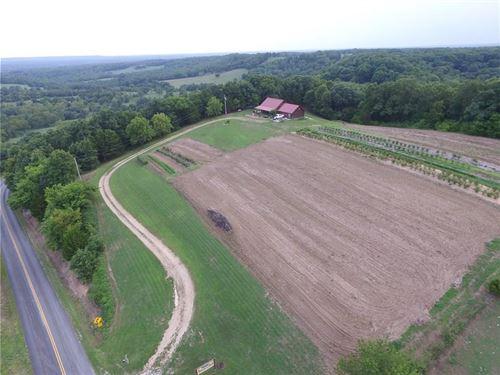Southwest Missouri Berry Farm : Washburn : Barry County : Missouri