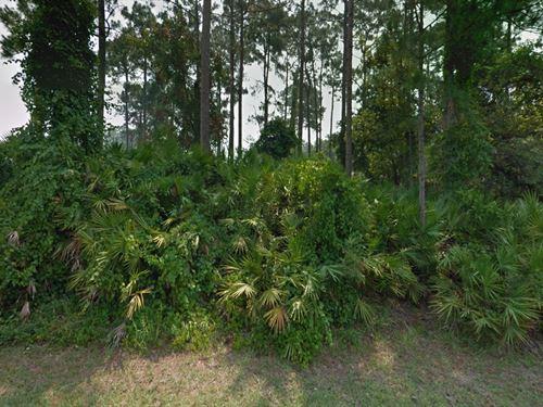 Flagler Co, Fl .23 Ac 72K Neg : Palm Coast : Flagler County : Florida