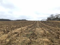 Land Auction In Indiana : Howe : Steuben County : Indiana