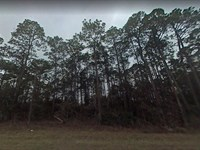 Jackson County, Fl $12,000 : Alford : Jackson County : Florida