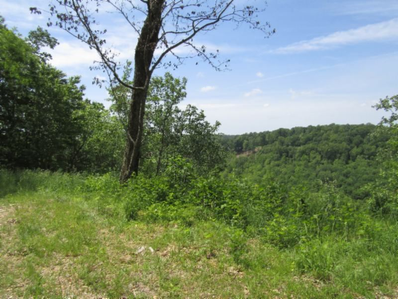 24.36 Acres Close To Lake : Smithville : De Kalb County : Tennessee