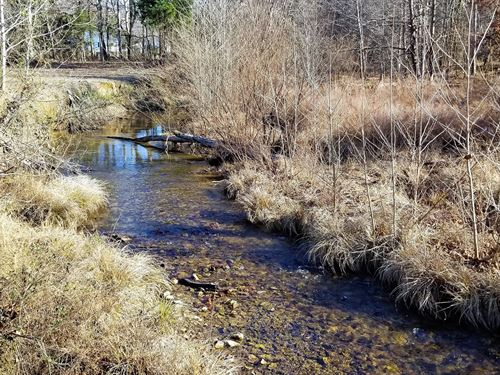4.95 Acres, Creek, Utilities : Linden : Perry County : Tennessee