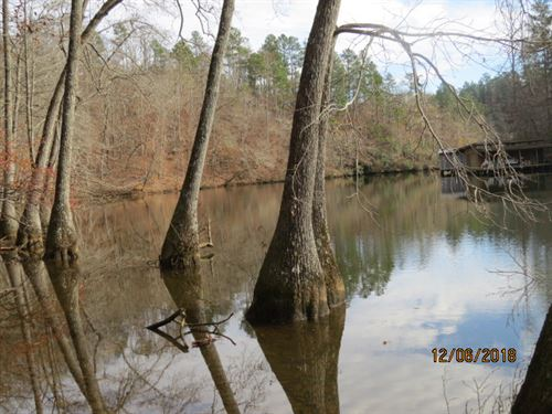 Mitchell Lake-Front Property : Clanton : Chilton County : Alabama