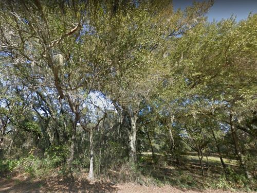 Marion County, Fl $90,000 : Belleview : Marion County : Florida