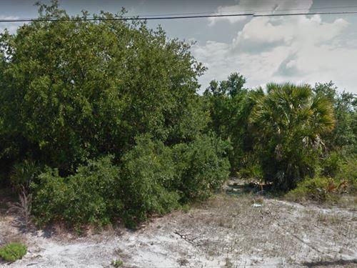 Sarasota Co, Fl .229A, 34K Neg : North Port : Sarasota County : Florida